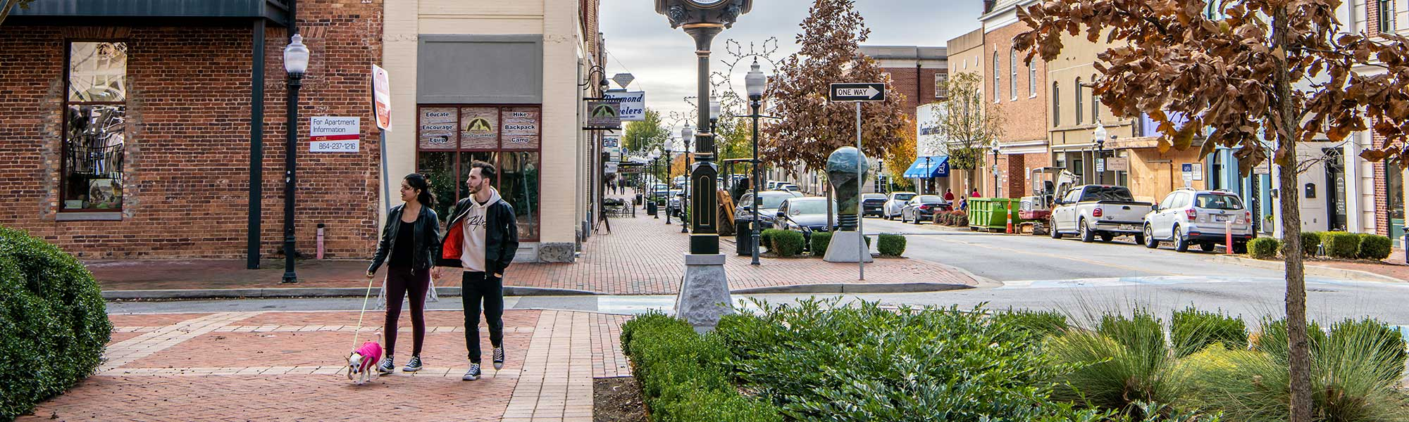 New Project Highlight: Economic Development for Vienna, VA